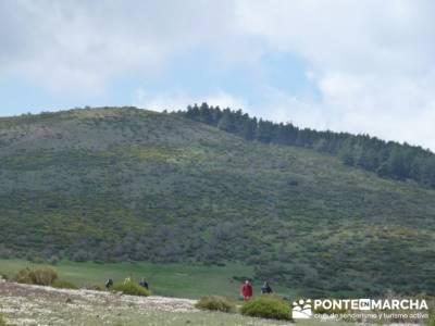 Ruta de Senderismo - Altos del Hontanar; senderos en la palma